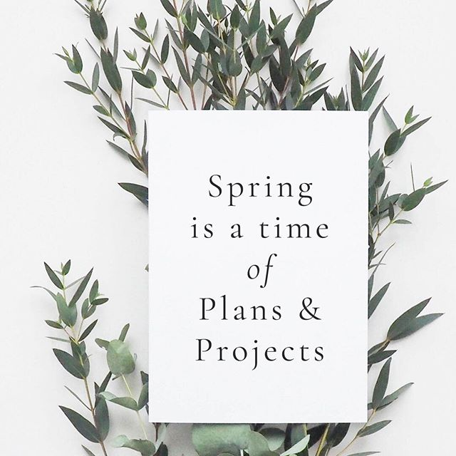 """""""Spring is a time of plans & projects"""" - - What are your plans & project for the next few months? 🌻"""