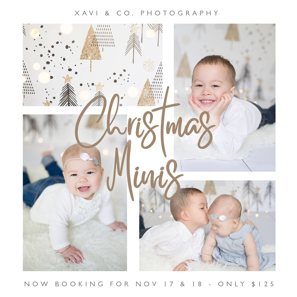 "2018 Christmas Minis - Our favourite time of the year is back! Book online now and reserve your spot for our Christmas Mini Sessions. We're only offering two days of sessions (November 17 & 18) and they'll all be held at the beautiful Studio Lantern (556 Clark Dr, Vancouver, BC).Click here to check availability and book: https://xaviandcophotographybooking.as.me/$125 Paid in full at time of booking*20 minute session5 digital images from your gallery (additional digital images $20/each). One backdropUp to 4 people**Paid in full at time of booking. 100% refundable if cancelled 5 days before session. 50% refund if cancelled less than 5 days before session.PROMO: If you ""like"" Xavi & Co. Photography on Facebook and share our post about Christmas Mini Sessions on your page before October 15th, we'll add a bonus digital download to your 2018 Christmas mini session package.Click here to book: https://xaviandcophotographybooking.as.me/Please connect with us via FB messenger or email if you have any questions: information@xaviandcophotography.com"