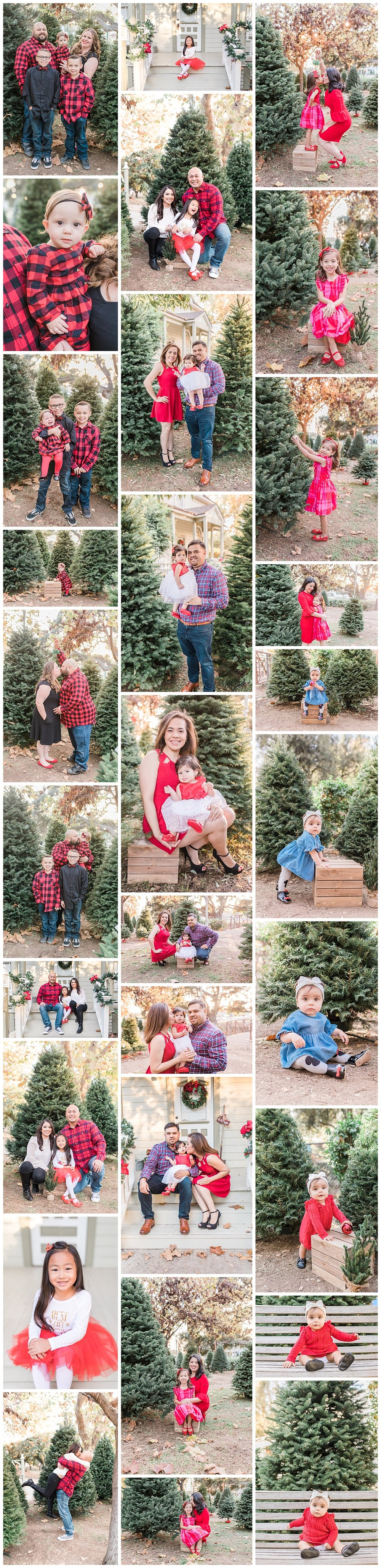 Christmas Tree Farm | Family Photographer | Los Angeles, California