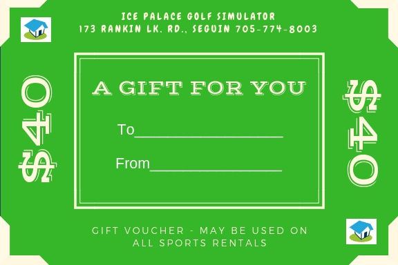 Want a great way to have fun and keep your game up?  Amazing gift for the whole family to enjoy!!  What a great way to spend time together, get the kids active during the winter months, and have FUN!