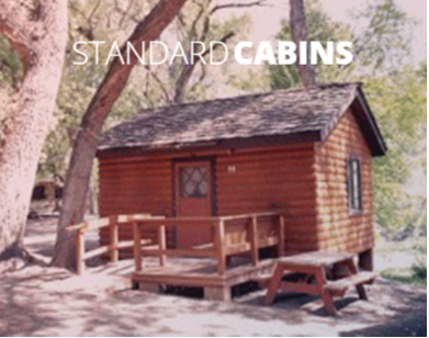 The standard cabins are approximately 250 square feet plus a loft sleeping area accessible by ladder.  They accommodate up to 6 people, maximum 4 adults.  Standard cabins include a toilet and shower.  There is a double bed and bunk beds on the main floor and a twin and a double mattress in the loft.