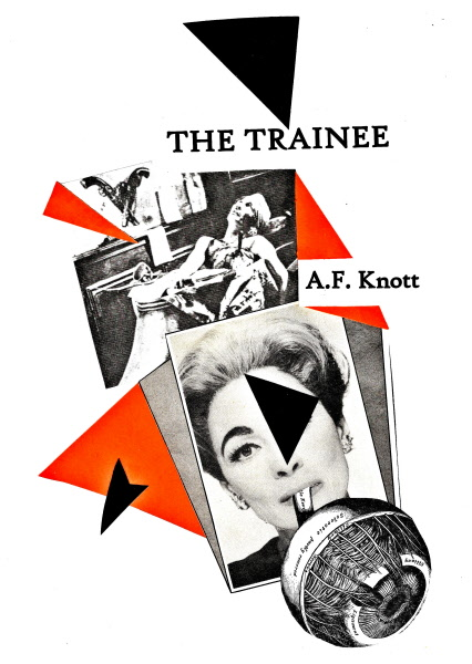 zzr_The Trainee Collage Cover 1.jpg