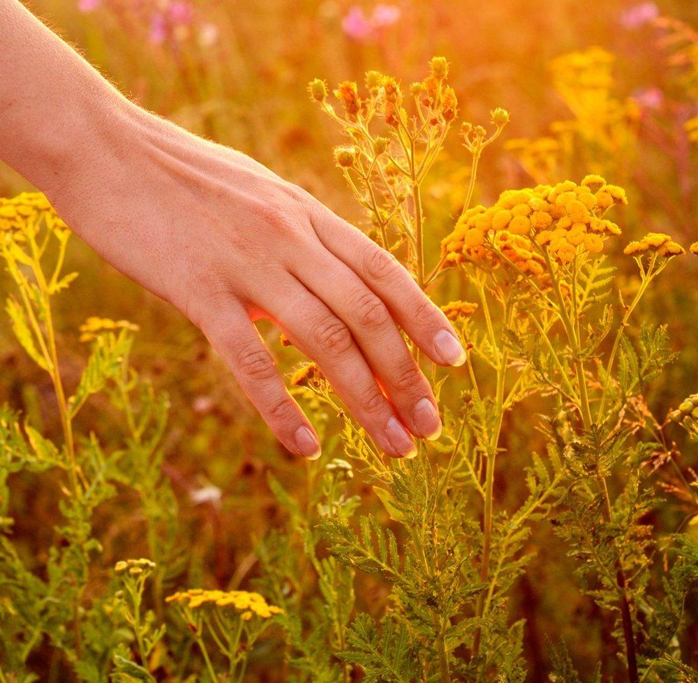 handflowers (1).jpg