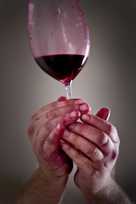 wine_book_28.jpg