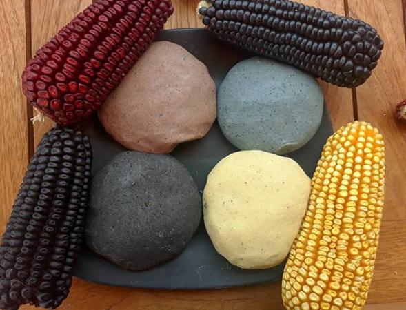 tortilla de maíz mexicano.png