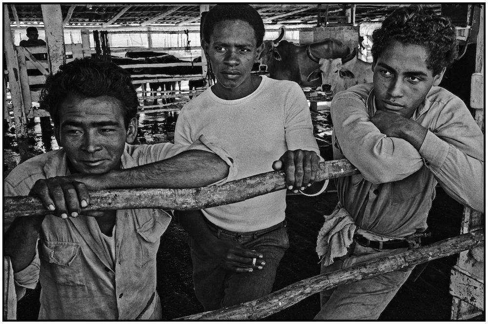 CUBA-DAIRY FARMERS---1968 - Copy copy.jpg