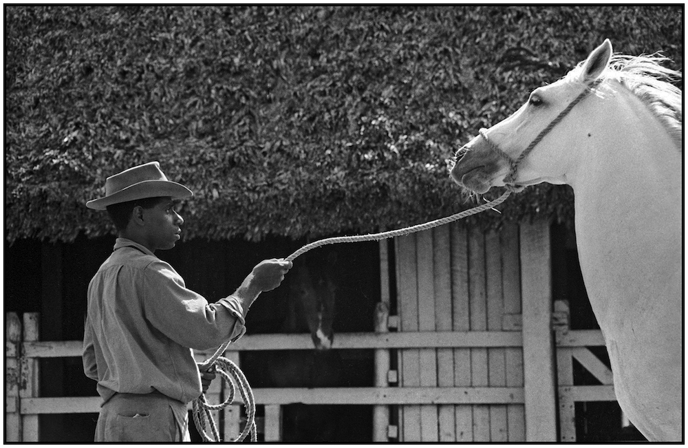 CUBAN DAIRY FARMER 1968  copy.jpg
