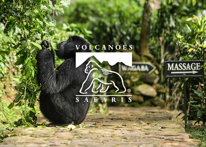 Bwindi  Lodge - Three-night stay for two guests sharing at Volcanoes Safaris Bwindi Lodge in Uganda.· Full board accommodation for 3 nights· Internal road transfers· All meals and drinks (premium beverages excluded)Location: UgandaRetail: $2,000Donated by: Volcanoes Safaris