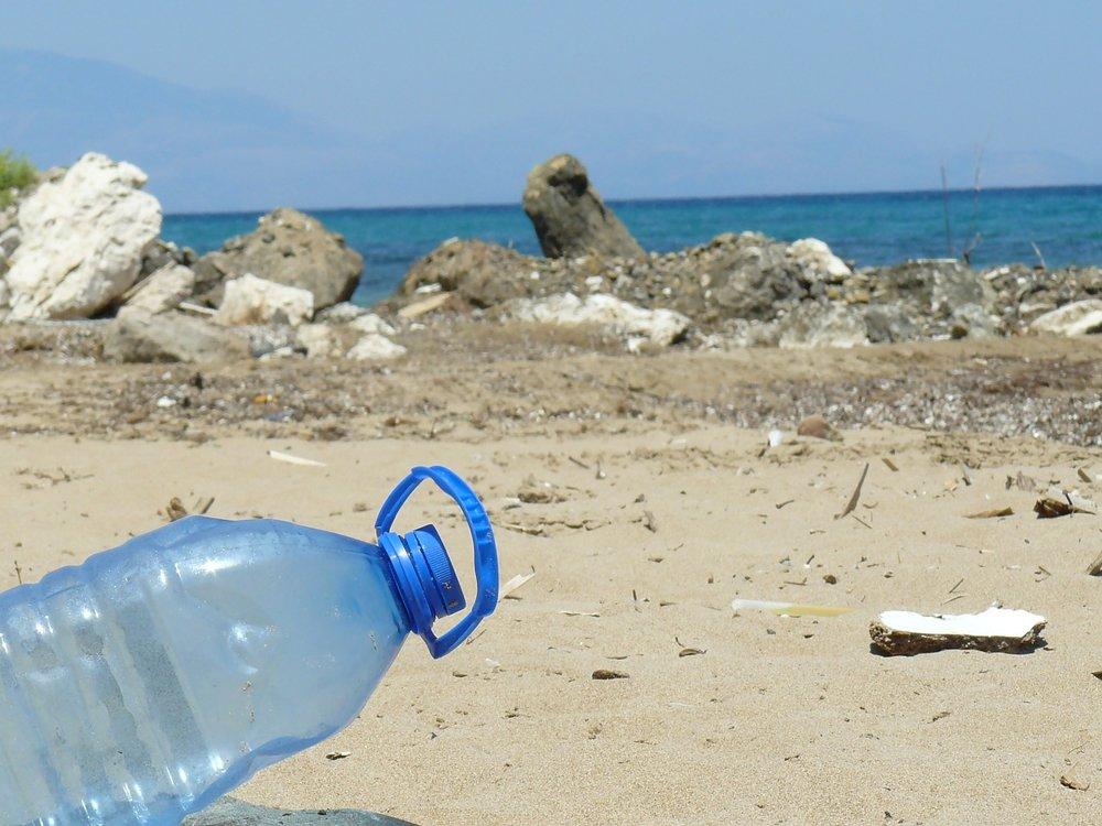 Desplastificate Todos Santos y Pescadero - Grant Amount: $20,000Project: Educating 7 preserving communities from the risk of single-use plastics in Baja California Sur.