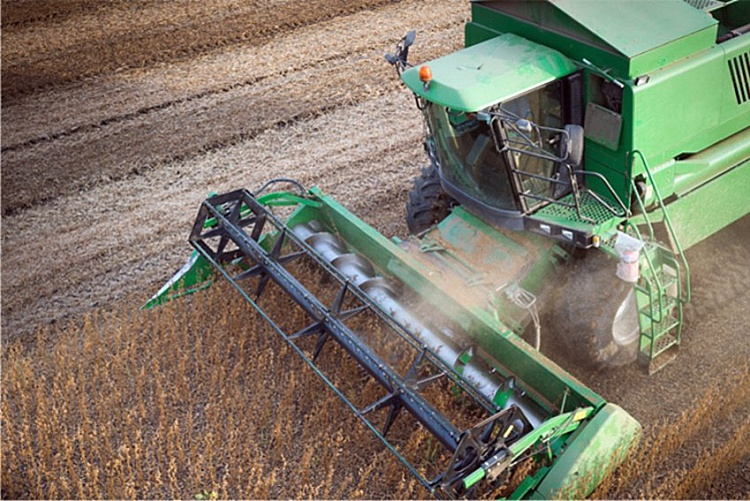 Brewster_Soybean_Processing_0003.jpg