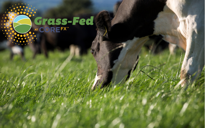 Grass fed and Logo.PNG
