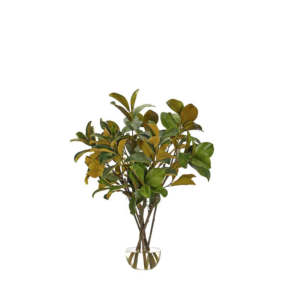 Faux Magnolia Foliage