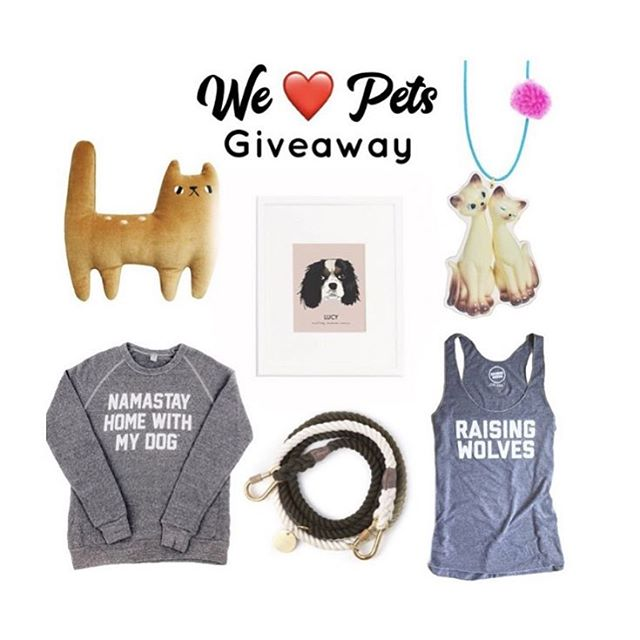 Animal Lovers Giveaway 🐶🐱 Quick & Easy! Win it All!  LIKE this photo!  FOLLOW ALL:  @gunnerandlux @savageseeds @themarynshop @sleepy_king @treatdreams @noblefriendsshop ... For an extra entry Tag a Friend!  One friend per comment, as many entries as you like for additional chances!  That's It! 💥GIVEAWAY ENDS in 48 hours You must be following all accounts for your entry to count. Please note this giveaway is in no way sponsored, endorsed, or administered by Instagram, Inc.