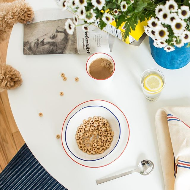 Saturday morning with the Cheerio thief! 🐾 Shop tabletop at The Maryn. ☕️ #marynstyle