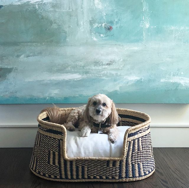 Back in stock (but not for long!) we've got 3 of these adorable pet beds left! Thank you @lynne_smith for sharing a photo of little Sammy enjoying the bed! 😊💙 #marynstyle