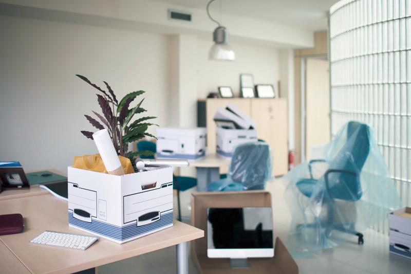 office 800w.jpg