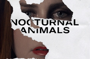 Nocturnal Animals paper cut image.jpg