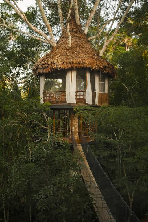 treehouse lodge2.jpg