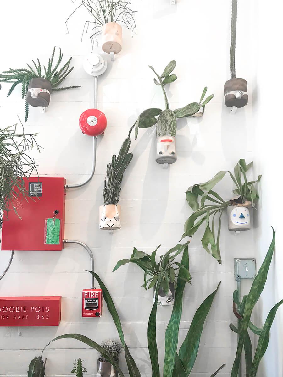 boob-planter-wall-new-orleans.jpg