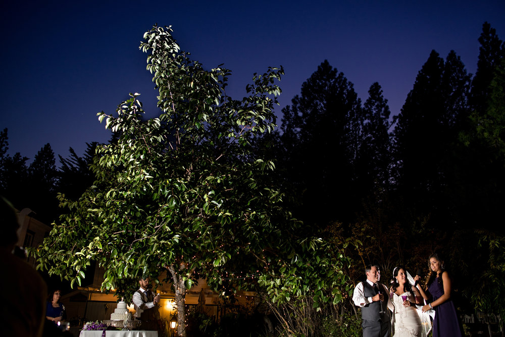 Toast during wedding at Monte Verde Inn in Foresthill California.