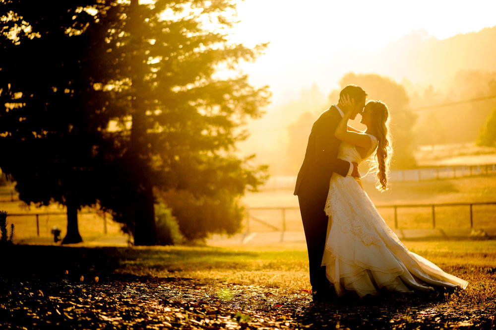 Wedding portrait during golden hour at backyard wedding in Sonoma California.