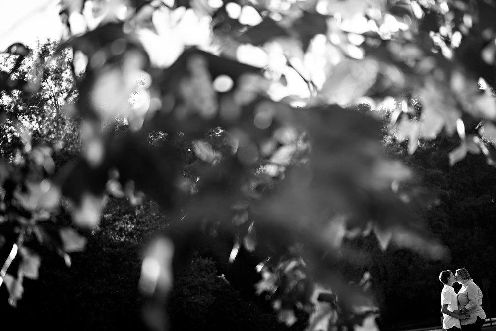 emily-cheryl-024-same-sex-engagement-sacramento-photographer-katherine-nicole-photography.JPG