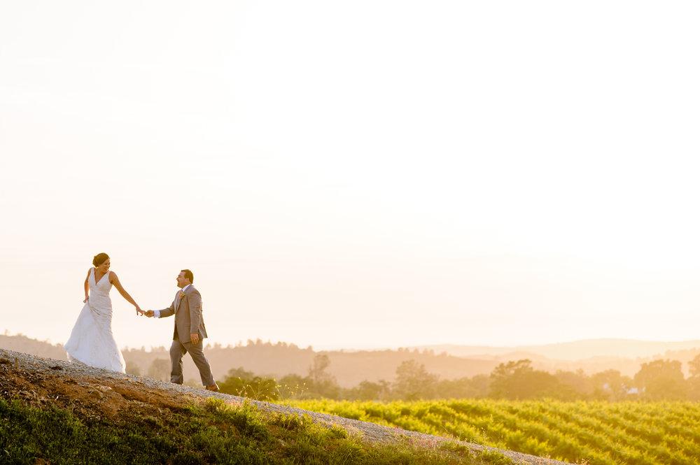 casey-sasha-026-helwig-winery-plymouth-wedding-photographer-katherine-nicole-photography.JPG