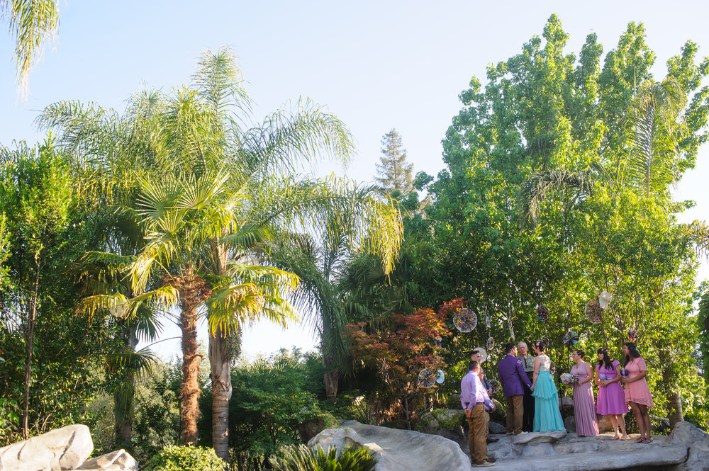 chloe-evan-016-backyard-sacramento-wedding-photographer-katherine-nicole-photography.JPG