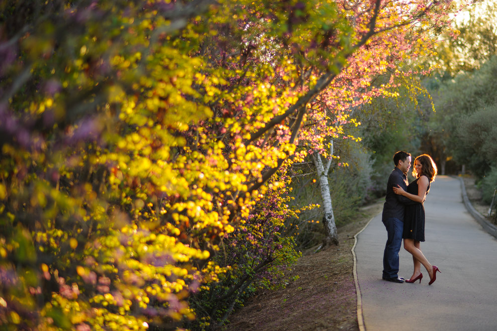 susan-brad-004-uc-davis-engagement-wedding-photographer-katherine-nicole-photography.JPG