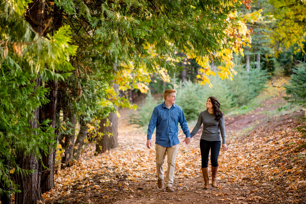 samantha-joel-005-apple-hill-engagement-photos-wedding-photographer-katherine-nicole-photography.JPG