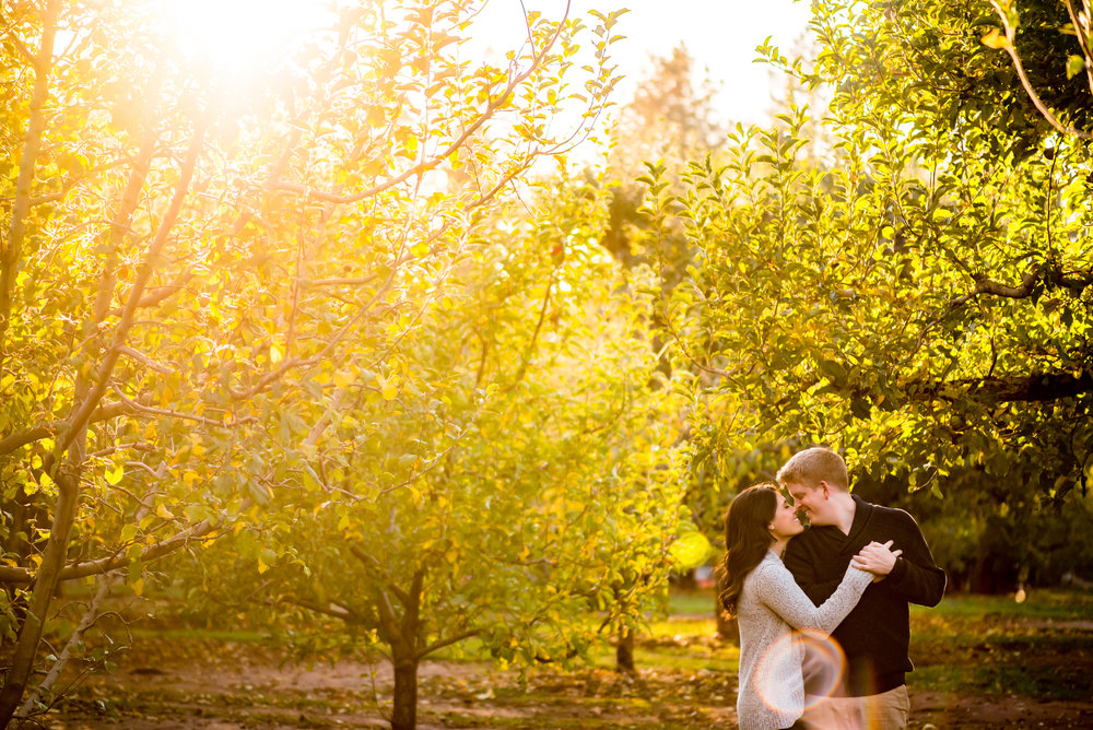 samantha-joel-011-apple-hill-engagement-photos-wedding-photographer-katherine-nicole-photography.JPG