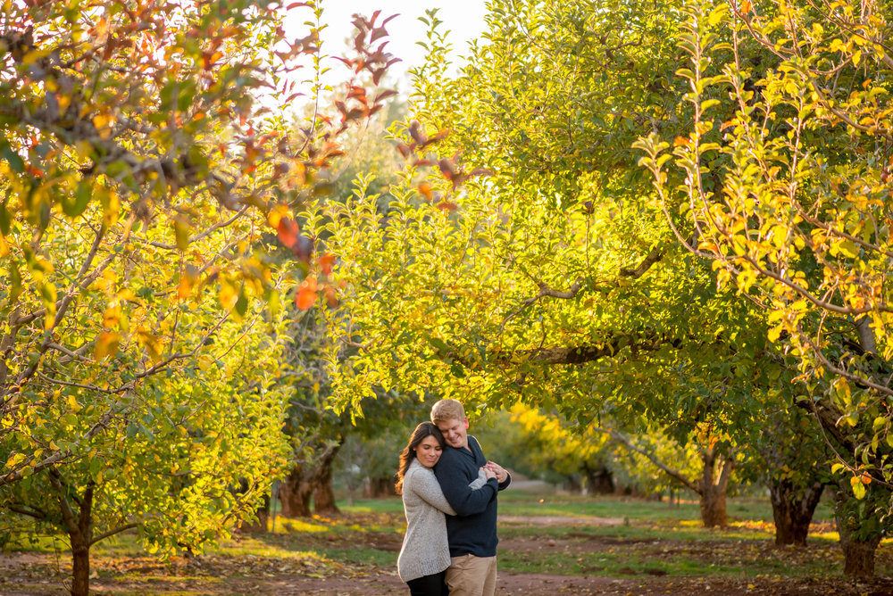 samantha-joel-014-apple-hill-engagement-photos-wedding-photographer-katherine-nicole-photography.JPG