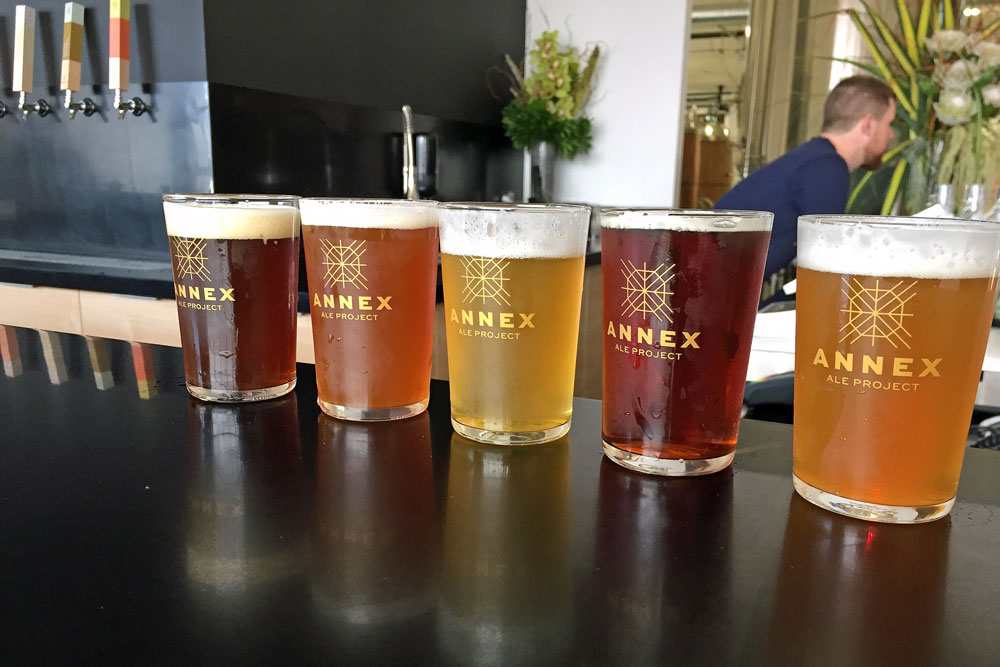 Annex Ale Project