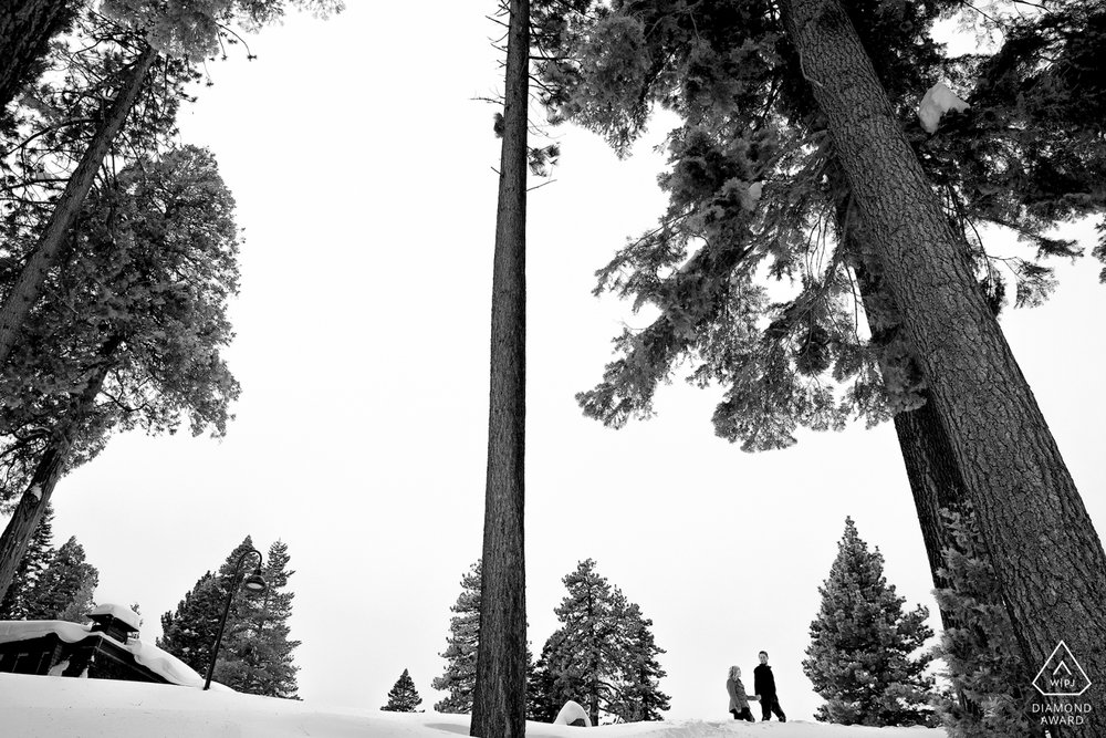 lake-tahoe-wedding-portrait-engagement-proposal-photographer-photography-south-north-city-snow-winter-sky-trees.jpg