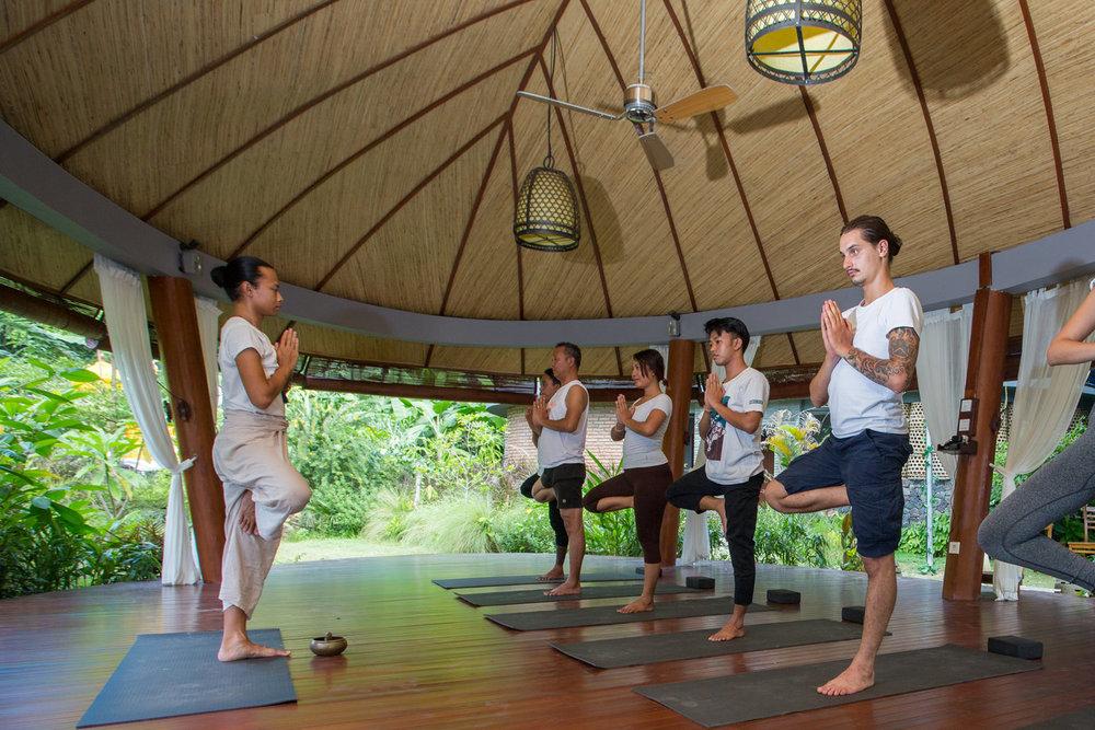 yoga-vriksasana.jpg