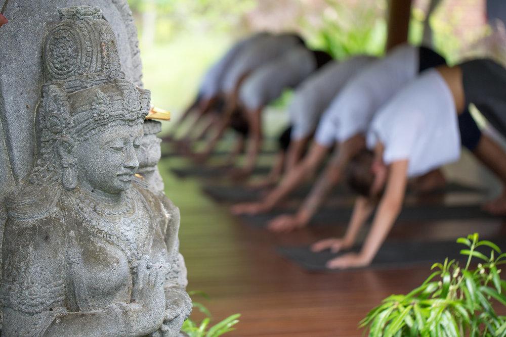 yoga-dwd.jpg