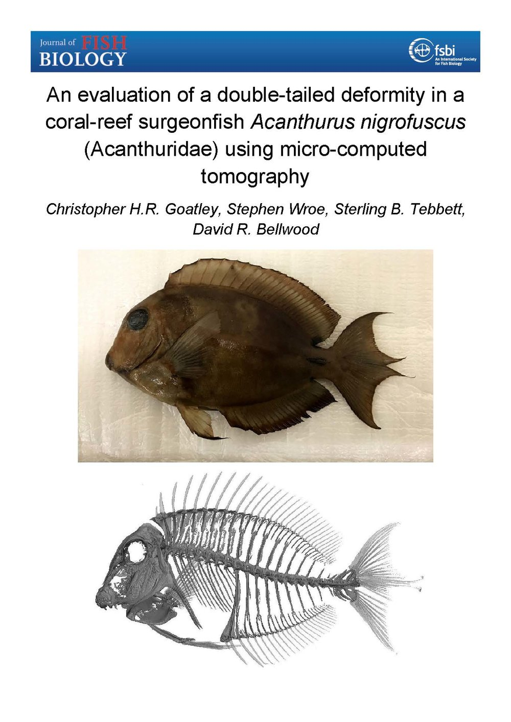 Goatley et al. 2018 (Journal of Fish Biology).jpg