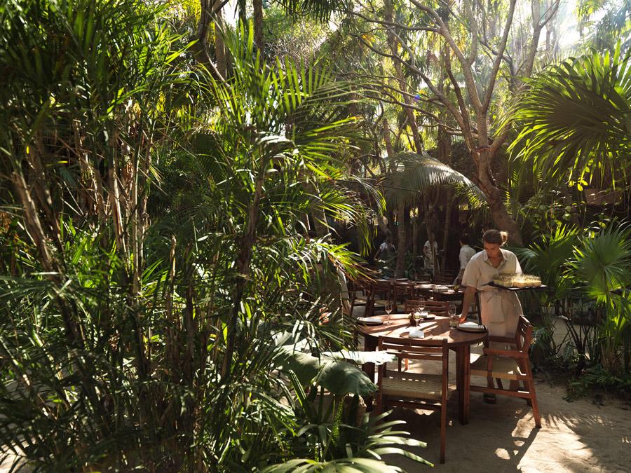 Dining-Room---Day---Noma-Mexico.jpg