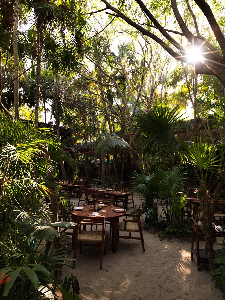 Dining-Room---Noma-Mexico.jpg