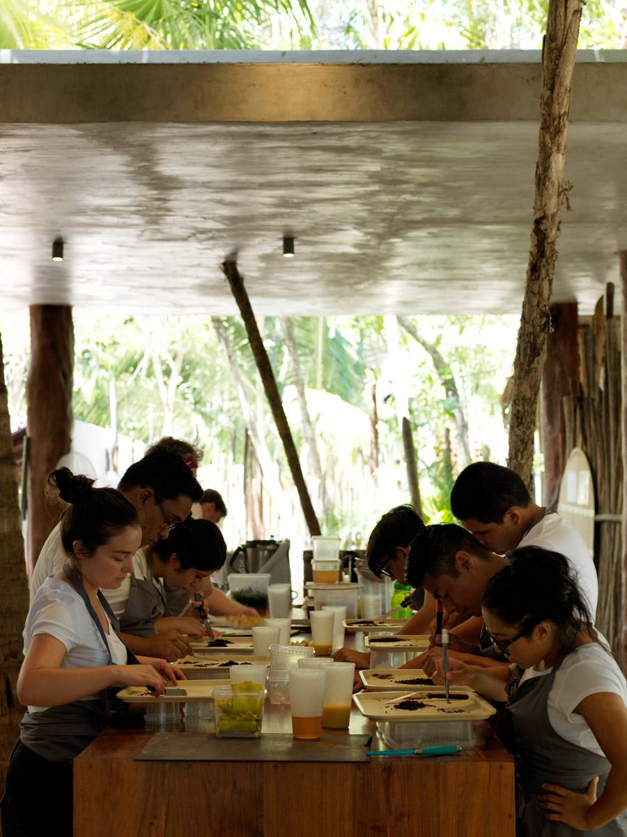 Main-Kitchen---Noma-Mexico.jpg