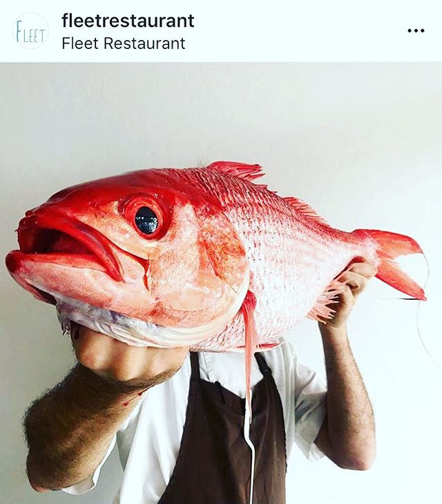 We're so excited for so many of our guests who made it into this years @financialreview top 100 restaurants. Just Like the dynamic duo of Josh & Astrid from Fleet in Brunswick Heads coming in at number 10 in Australia 🇦🇺 for their little 22 seater restaurant that's taken Brunswick heads by storm ! If you haven't eaten here it's a must on anyones list 😋To find out where it all began, what it's like working with your partner & how they keep winning award after award download and listen to our Fleet episode 'The Dream Team' now from  iTunes, our website or just click the link in our bio #dreamteam #atr2018 #top100 #thepassau