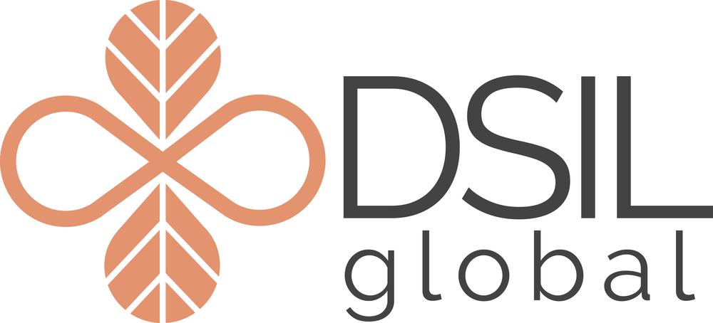 DARK GRAY DSIL Logo High Res PNG.png