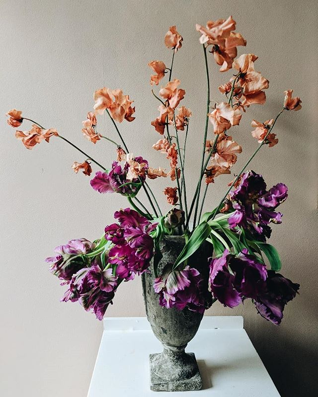 One of my more 'avant-garde' arrangements but I needed to combine these peachy canyon coloured Japanese sweet peas with these gnarly parrot tulips. (Sweet peas slightly on their last legs but still beautiful)