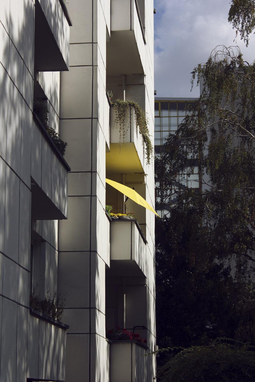 gul parasol.jpg