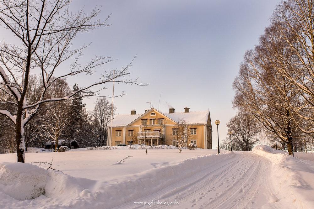 Winter-1002.jpg