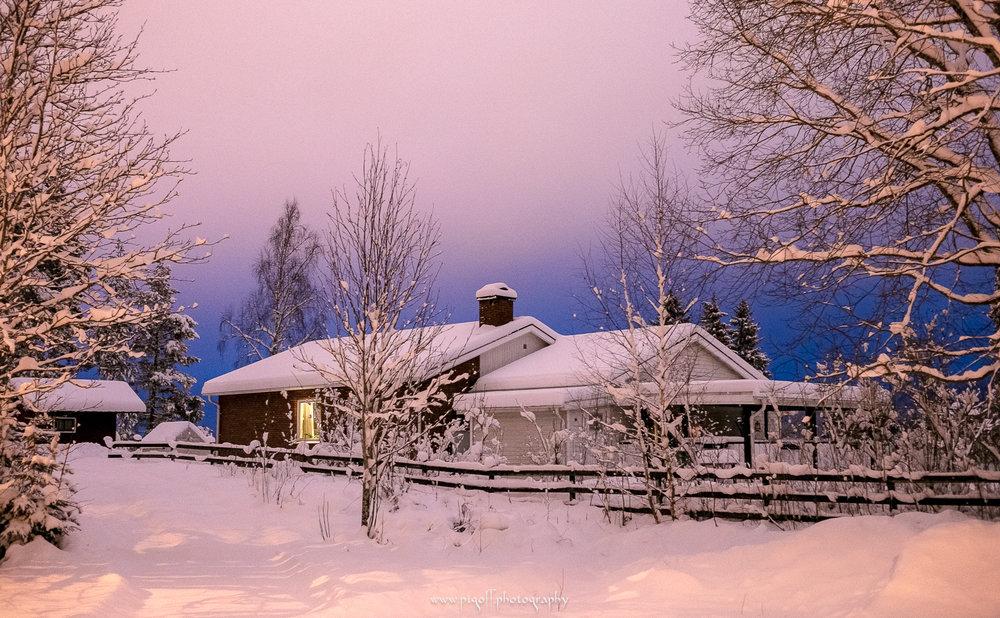Winter-1012.jpg