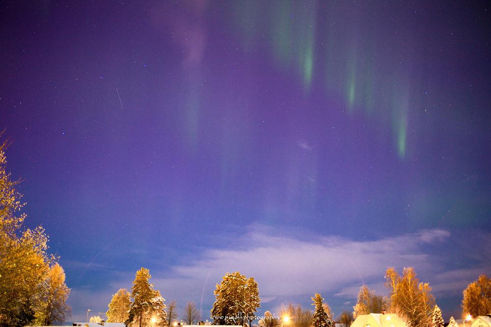 Winter-1016.jpg