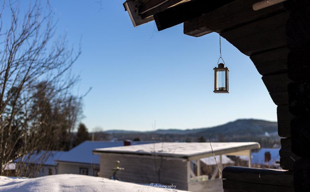 Winter-1021.jpg