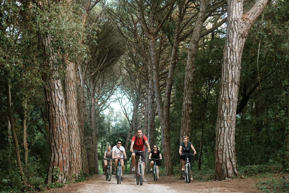Biking in Rovinj, Croatia. Five Elements Gueshouse Accommodation in Rovinj, Croatia.