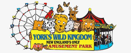 4 pack of day passes to York Wild Animal